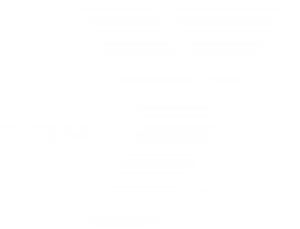 YMCA DC Youth & Government